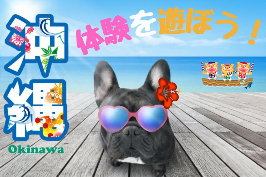 おすすめ関連情報 沖縄着地型ツアー・アクティビティ 旅TIME